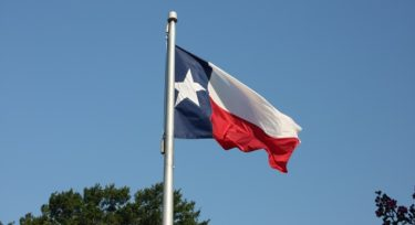 Texas DIR Language Solutions